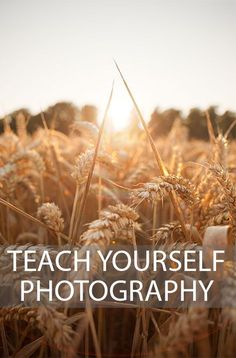 A look at the most important things to study when starting to learn photography, and how to ensure this learning sinks in. Written by Discover Digital Photography January 4th, 2015. http://www.discoverdigitalphotography.com/2015/teach-yourself-photography/