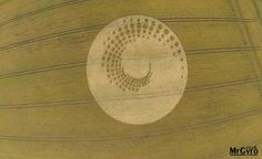 Inglaterra Crop Circle aparece em Forest Hill, Marlborough (Wiltshire)