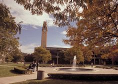 The University of Detroit Mercy, where I am lucky enough to attend starting this fall (: