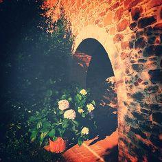 Il giardino segreto. #altrasimeno #umbria #garden #architecture #flowers #travel #italy @borgotorale foto di @egyzia