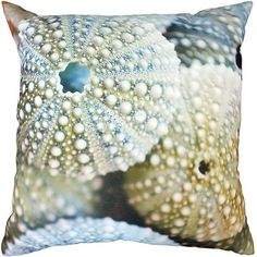 Mulberi In & Outdoor - Kina Shells - Multi Cushion