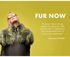 Fur Now | WeAreFur.com