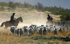 Estancia-Nibepo-Aike-Patagonia-Argentina