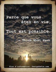 """Thich Nhat Hanh """"Parce que vous êtes en vie, tout est possible"""""""