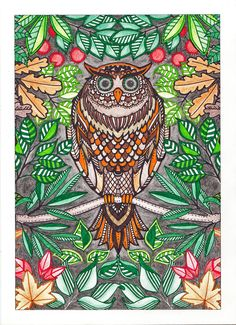 Owl From Secret Garden By Johanna Basford Postcard Colored SandraKZ
