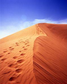 Dune Photograph - Signed Fine Art Print - California Desert