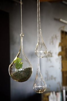 Tips for making #terrariums