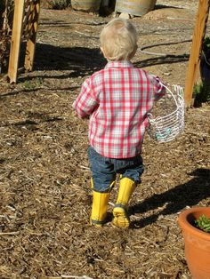 Today At Our Urban Farm - Little Yellow Boots