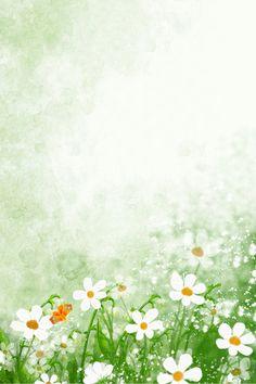 Modern Fresh Flower Beauty Festival E Commerce Poster Background Best Flower Wallpaper, Flower Background Wallpaper, Flower Backgrounds, Nature Wallpaper, Wallpaper Backgrounds, Artsy Background, Dslr Background Images, Textured Background, Flower Graphic Design