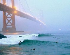 San Fran surfers.