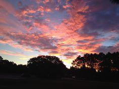 Beautiful sunrise Wall Springs Park, Fla.