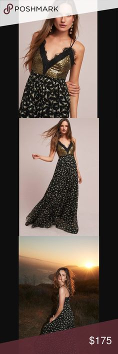 Anthropologie Lakshmi sequin maxi NWT. Size 4. Absolutely gorgeous. No trade. No lowball please. Anthropologie Dresses Maxi