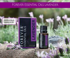 Grown and harvested in Bulgaria due to ideal climate and soil, Forever™ Essential Oils Lavender contains high levels of Linlayl acetate, which gives Lavender its fruity sweet aroma and high levels of Terpenes, providing maximum benefits. Forever Living Aloe Vera, Forever Aloe, Forever Living Business, Essential Oil Carrier Oils, Forever Living Products, Lavender Oil, Perfume Bottles, Essentials, Pure Products