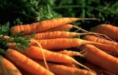 David's Garden Seeds Carrot Danvers DGS30010AS (Orange) 1... https://www.amazon.com/dp/B013GLUD10/ref=cm_sw_r_pi_dp_x_AXwGybWSV6QM8