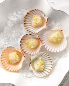 "See the ""Taylor Bay Scallops"" in our  gallery"