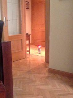 Entras o sales ,Sofia?