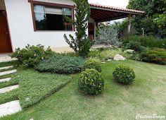 Forrações de Jardim são aquelas plantas que possuem pouca altura, com crescimento horizontal maior (se lastram) do que o vertical, forrando grandes espaços.
