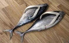 Fish Flip-Flop Sandals