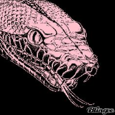 Snakeee Snake Gif, Photo Editor, Pictures, Design, Photos, Grimm