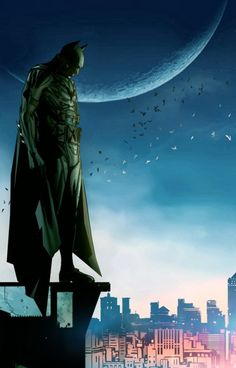 Guarding Gotham....again NOT a Batman fan.....but there are a lot of cool pics of him, ok!....leave me alone!