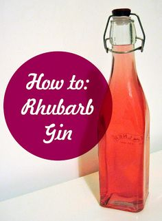 Rhubarb gin by @laura_swaddle < WHAT a great idea! we have rhubarb in our garden...