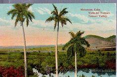 TARJETA POSTAL MATANZAS CUBA, VALLE DEL YUMURI (Postales - Postales Extranjero - América - Cuba)