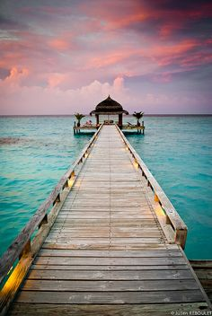 Kuramathi Island - Ponton by julien.reboulet i like to close my eyes and dream