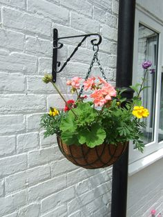 Hanging Basket Plants: Best Flowers For . Hanging baskets are a great way to enjoy your favorite plants anywhere, anytime. The options for plants are endless, though the choices can sometimes be overwhelming. This article will help. Hanging Plants Outdoor, Plants For Hanging Baskets, Hanging Flower Baskets, Hanging Pots, Diy Hanging, Hanging Racks, Garden Basket, Basket Planters, Fall Planters
