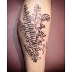 maidenhair fern tattoo - Google Search