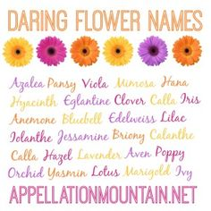 Azalea and Edelweiss: Daring Flower Names - Appellation Mountain Unique Girl Names, Cool Names, Baby Names And Meanings, Names With Meaning, Baby Girl Names Spanish, Female Names, Name List, Flower Names, Vintage Nursery