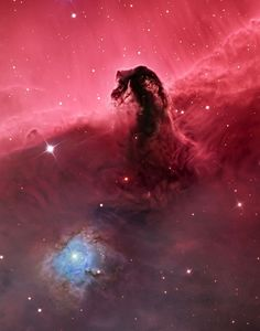 """""""The Horsehead Nebula"""". The photo of the Horsehead Nebula includes the folds of illuminated gases below the well-known formation. Winner in the Deep Space category. (Photo by Bill Snyder, USA/The Astronomy Photographer of the Year 2014 Contest) Horsehead Nebula, Orion Nebula, Constellation Orion, Helix Nebula, Carina Nebula, Andromeda Galaxy, Hubble Galaxies, Eagle Nebula, Cosmos"""