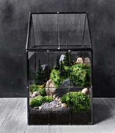 House shaped vessel features soldered metal trim, glass panels, and hinged roof for easy access. The terrarium has been planted with two varieties of live moss, an easy to care for woodland plant, and neatly landscaped with slate, river rock, sand, and faux pine trees. Features: •