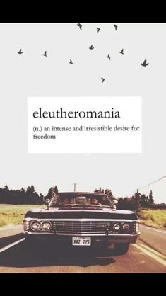 Eleutheromania (n) an intense and irresistible desire for freedom
