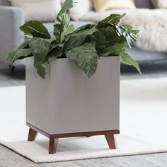 Madiera Aluminum Cube Planter with Hardwood Base - Planters at Hayneedle