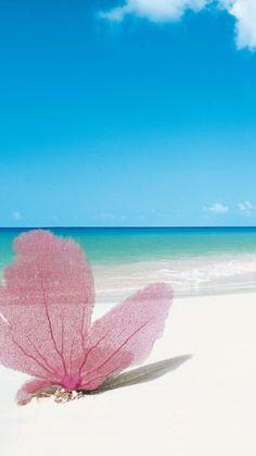 Playa Paraiso, Cayo Largo, Cuba, Best beaches of 2016, Travellers Choice Awards 2016