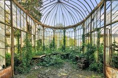 Image result for abandoned victorian greenhouse