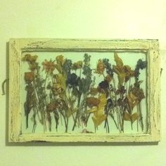 Dry special flowers (wedding bouquet, funeral flowers, flowers from husband/boyfriend) and put them in an old window frame or really any frame box (use a hot glue gun). Awesome way to preserve such special flowers!