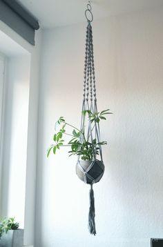 DIY Macrame Blumenampel mit Betontopf