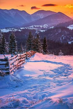 Really want excellent tips concerning travel? Go to our great site! Winter Time, Winter Season, Outdoor Pictures, Winter Magic, Winter Beauty, Winter Wonderland, Travel Inspiration, Nature Photography, Beautiful Places