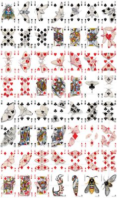 Cryptic Cards: A Curiously Camouflaged Playing Card Deck