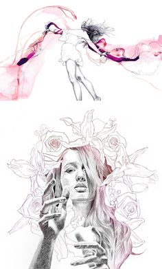 Illustrations by Lucy Evans