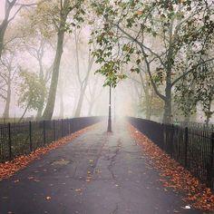 Foggy morning (: @johannagirl1) #islington #angel #london #thisislondon #ilovelondon #pictureangel #pictureislington #igersislington #igerslondon #ig_london  #highbury #northlondon by islington_london