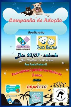 BONDE DA BARDOT: RJ: Lar de Chiquinho faz campanha de adoção em Copacabana, neste sábado, das 10h às 17h (23/07)