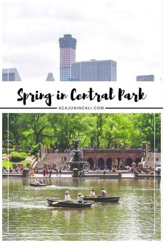 Visit NYC | Spring in Central Park | Photos of Central Park | Central Park NY | Photography Journal | NYC Travel Tips via @a Cajun in Cali | travel writer, photographer & lifestyle blogger
