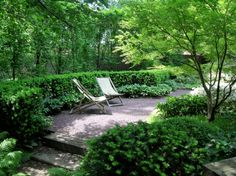 Glamorous European Hornbeam method St Louis Modern Landscape Decoration ideas with bushes crushed stone evergreen planting garden gravel landscape gravel pathway gravel patio gravel walkway