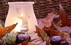 #autumn #autumn decoration #bright #candle #candlelight #celebration #chestnut #christmas #close up #colors of autumn #creative #decoration #dry #dry leaves #flame #illuminated #leaves #light #season