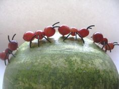 Summer Picnic Party foods...ants on a watermelon.  Visit www.creative-party-plans.com for more details.