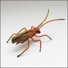 Bug by Rrkra on DeviantArt