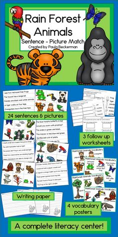 Your students will love this science and literacy center activity! Perfect for a rain forest, jungle or even Earth Day theme, this resource focuses on sight word sentences about amazing rain forest animals. The vocabulary posters and writing paper made an Rainforest Animals, Rainforest Theme, Rainforest Activities, Rainforest Project, Reading Centers, Literacy Centers, Activity Centers, Animal Activities, Science Activities