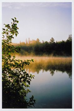 ontario, canada. sunrise in algonquin park